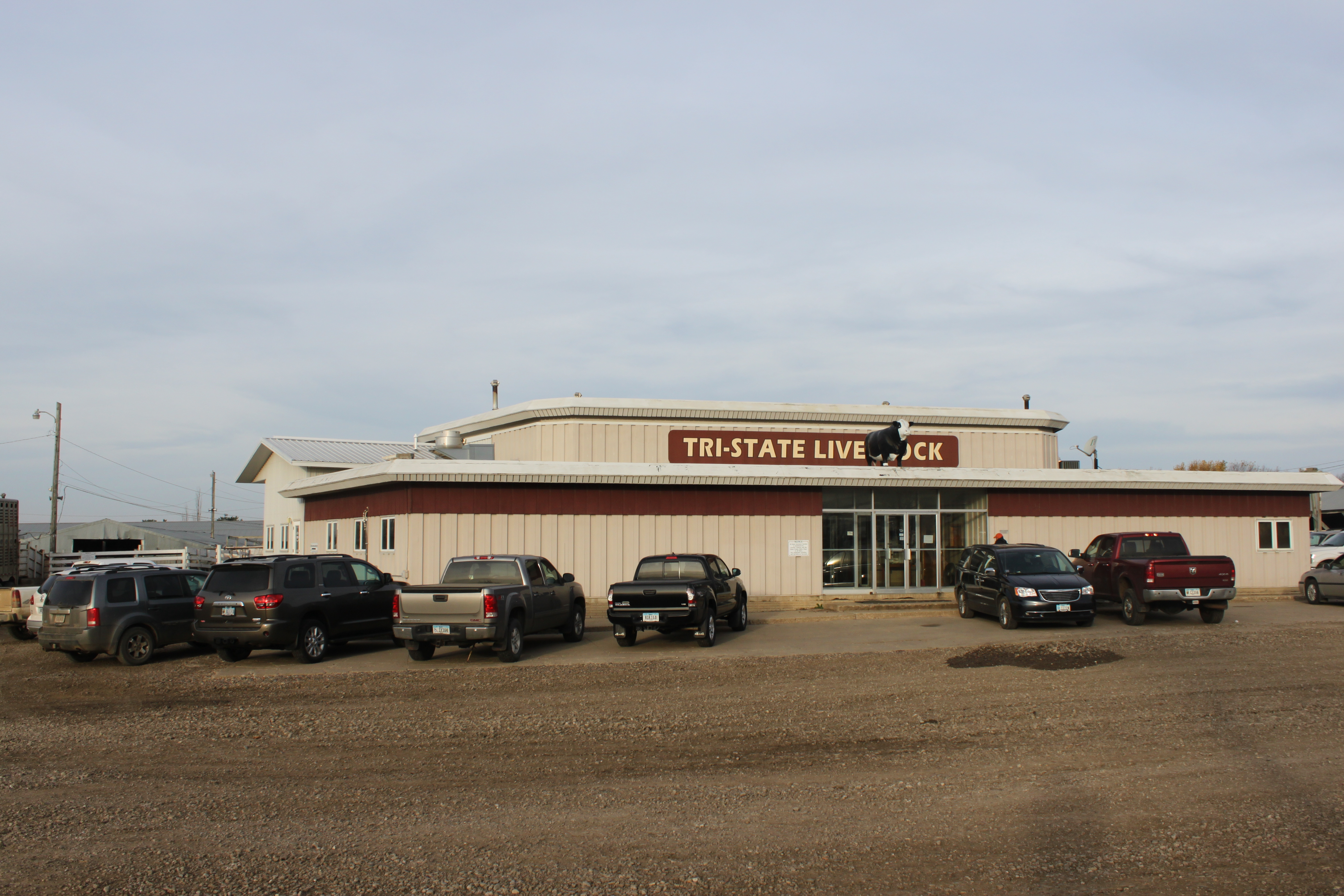 Our Facilities |Tristate Livestock Auction | Sioux Center, IA